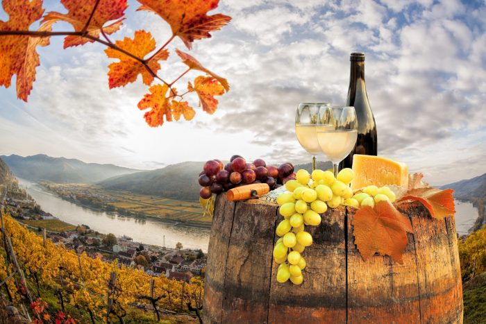 5 Wines to Make the Transition to Fall
